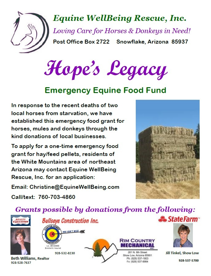 EqWBR Hopes Legacy Food Fund Flyer