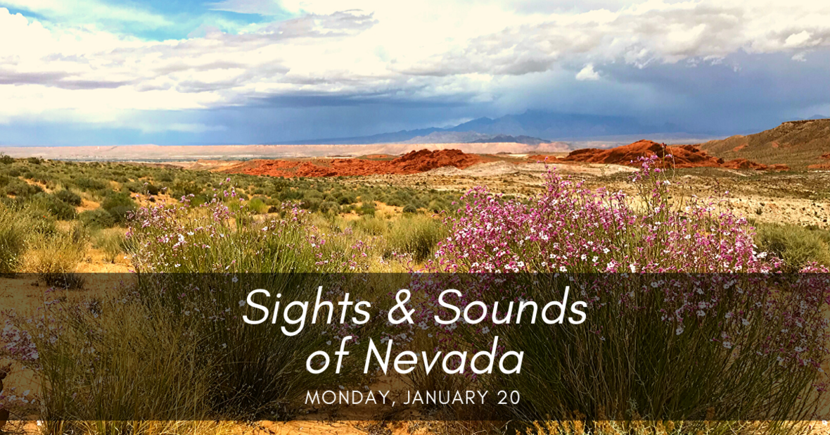 Sights Sounds of Nevada