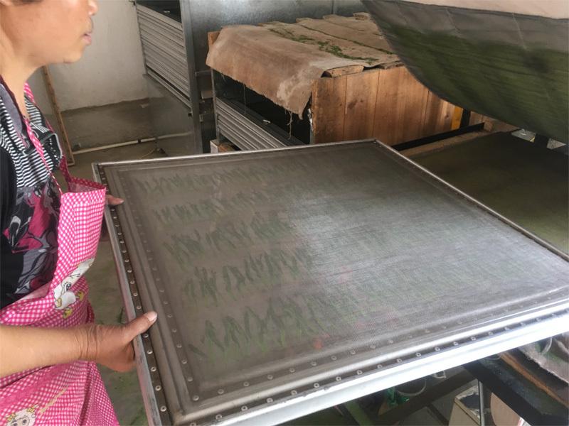 2020 Tai Ping Hou Kui Tea Processing 6