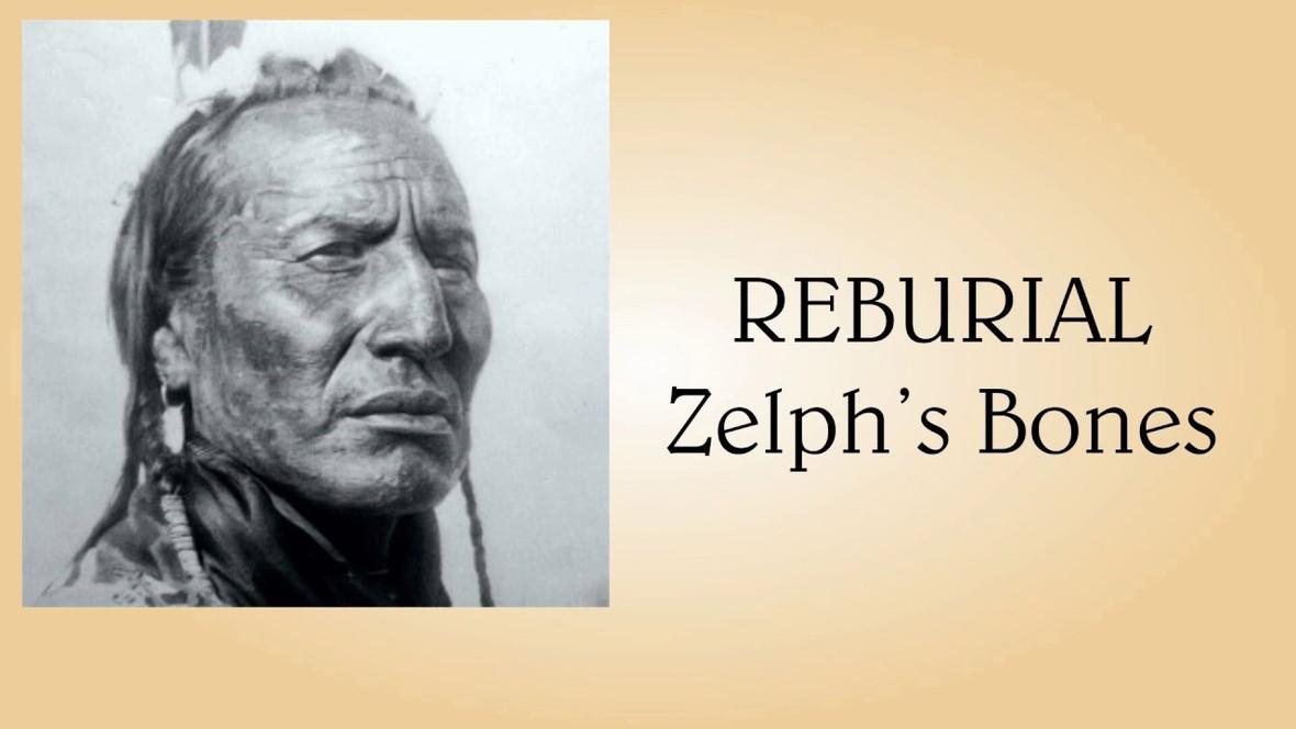 [Image: Zelph_Bone.jpg?1593387081]