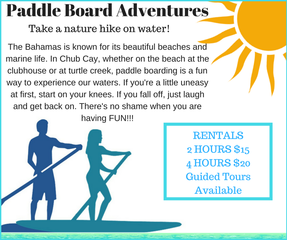 Paddle Board Adventures 1