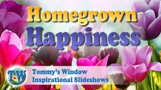 129941df762e Tommy s Window     Homegrown Happiness   – 10 Secrets to a Balanced ...