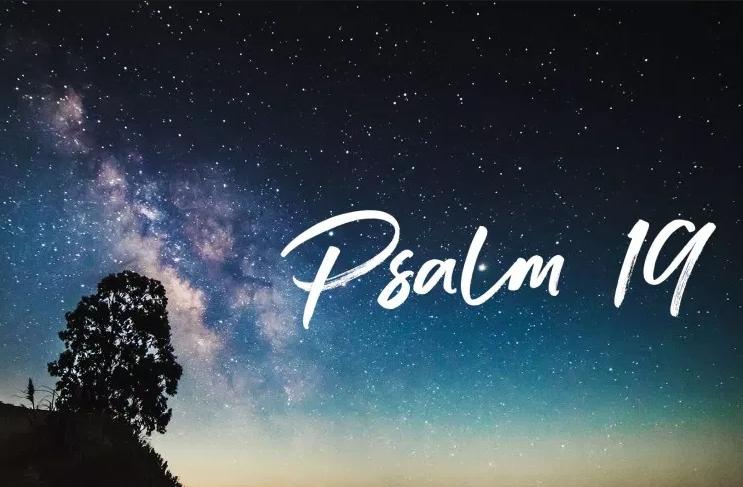 apsalm19